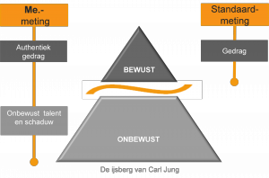 ijsberg-carl-jung